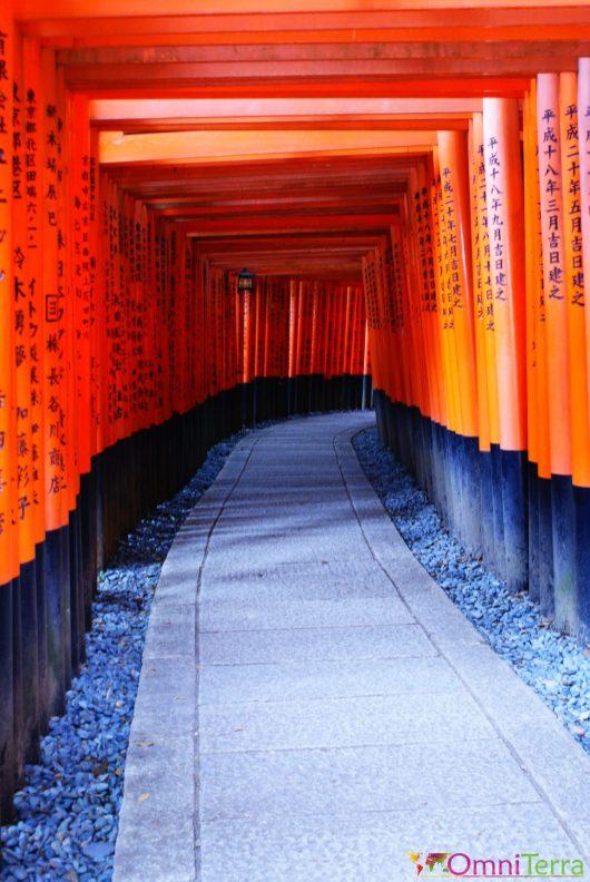 Japon - Kyoto - Sanctuaire Fushimi Inari Taisha - Arches - Intérieur