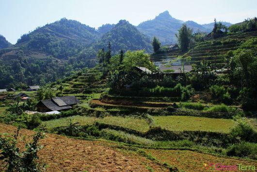 Vietnam - Bac Ha - Campagne