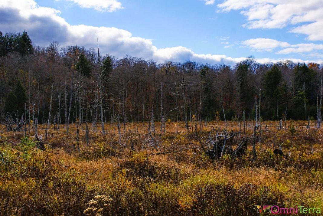 Estrie - Parc du mont Orford