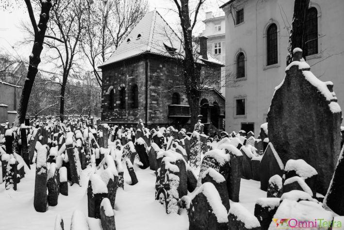Prague-Josefov-Vieux-cimetière-juif