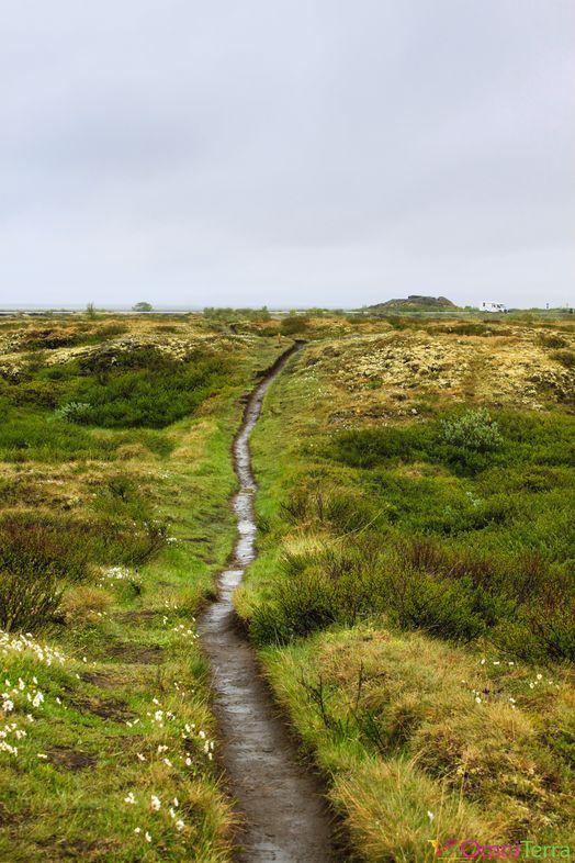 Islande - Lac Myvatn - Paysage