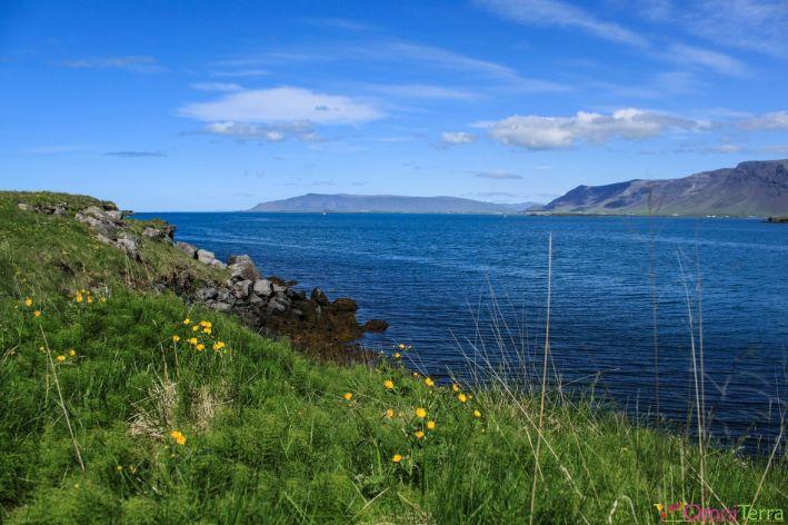 Islande - Videy - Paysage