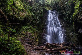 equateur-mindo-route-des-cascades-reina