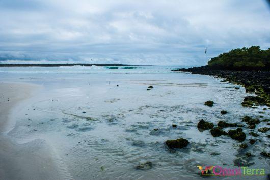 galapagos-santa-cruz-tortuga-bay