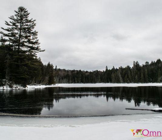 Laurentides - Parc Papineau Labelle (3)