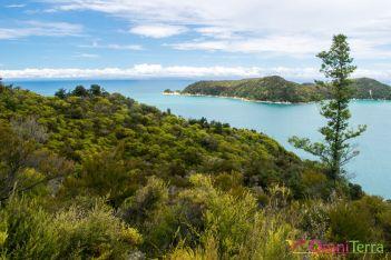 Nouvelle Zelande - Parc Abel tasman 2