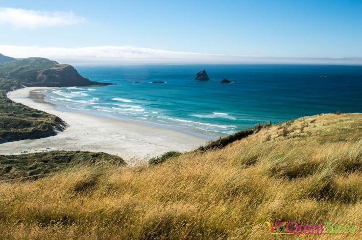 Nouvelle-Zélande - Péninsule Otago -sandfly bay