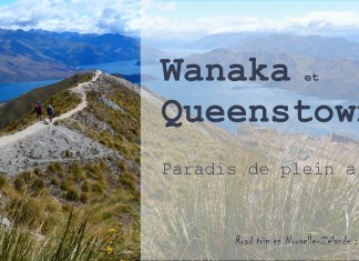Nouvelle zelande wanaka queenstown cover