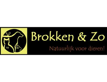 Voor Brokken & Zo hebben wij een compleet nieuwe website inclusief virtuele tour mogen maken