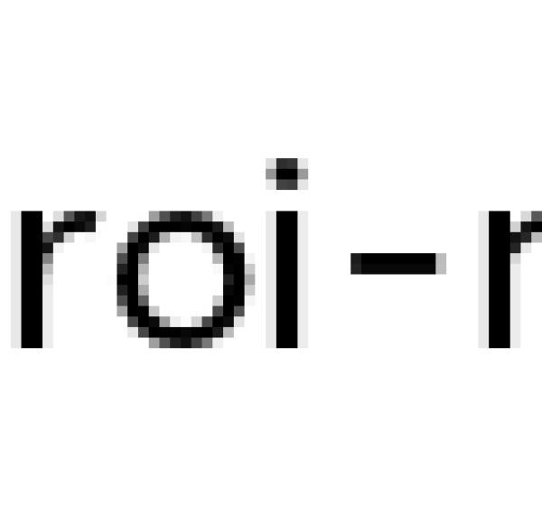 Виды глаголов в японском языке
