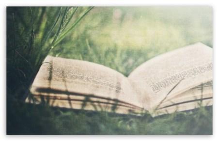open_book_on_green_grass-t2