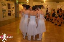 Bau Bau Ballando 2014 (8)