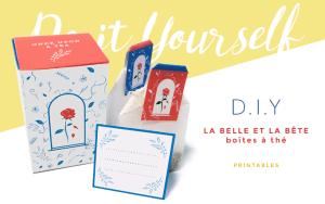 DIY tutoriel tea party la belle et la bete thé à offrir