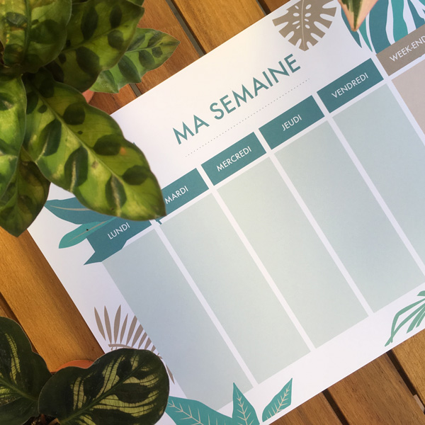 semainier green planning de la semaine à imprimer