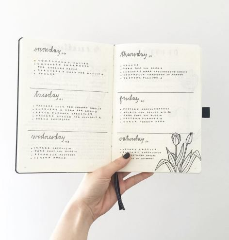 weekly log semainier bullet journal