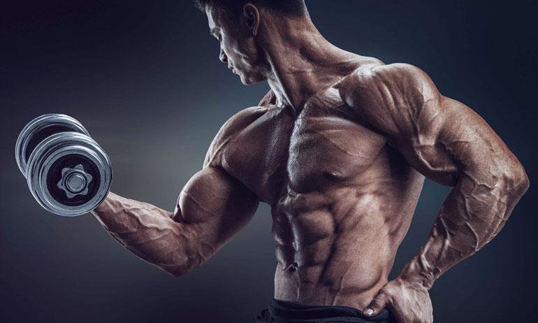 Premium gym trainer