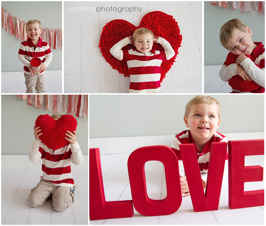 Valentines Day Mini Sessions On A Limb Photography