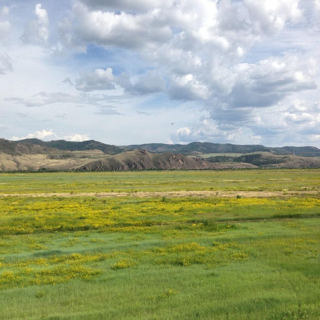 Green fields on the Trans Siberian train journey