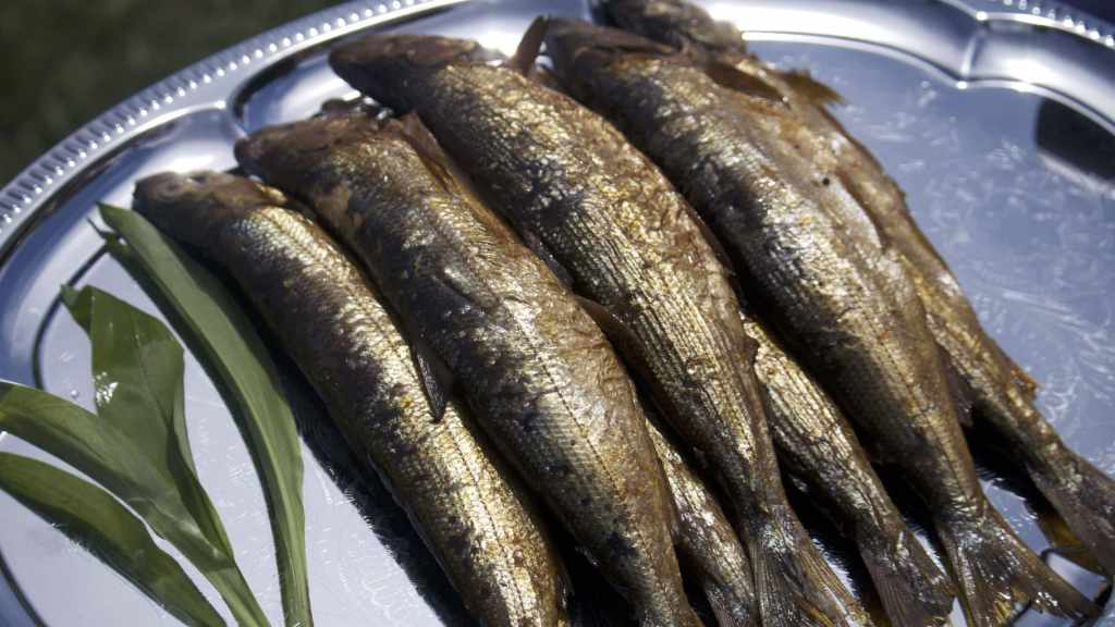 Smoked fish on the Golden Eagle Trans Siberian