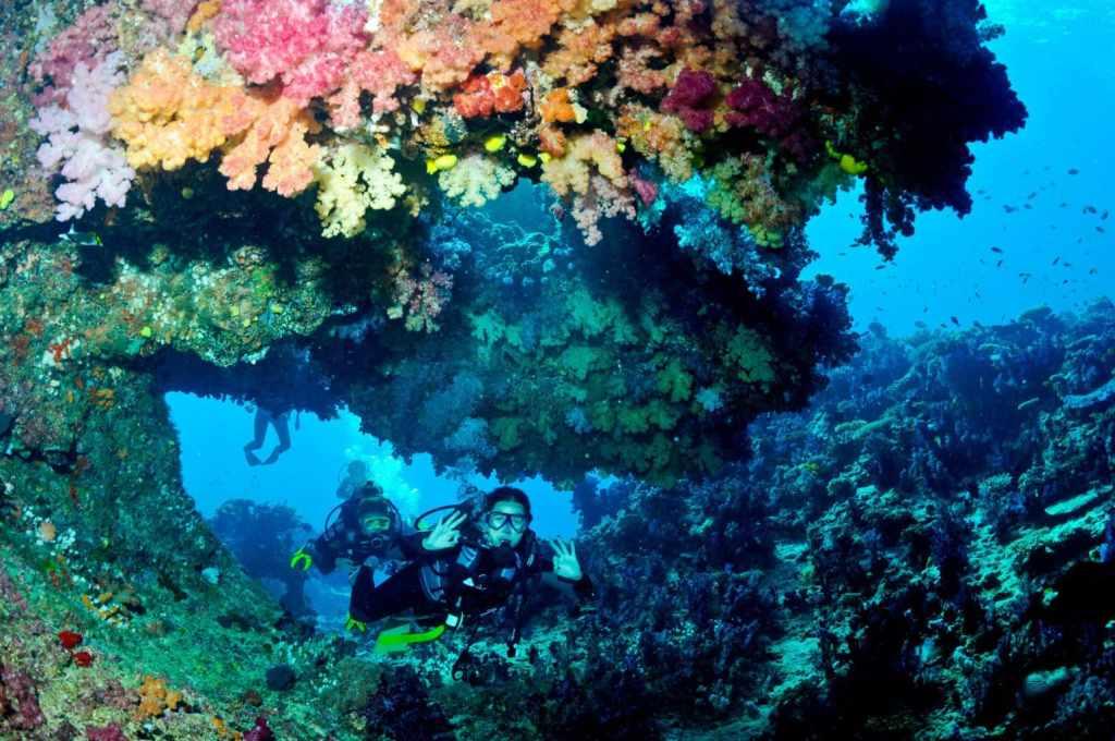 Fiji's diving