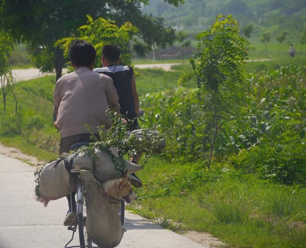 North korea photo essay