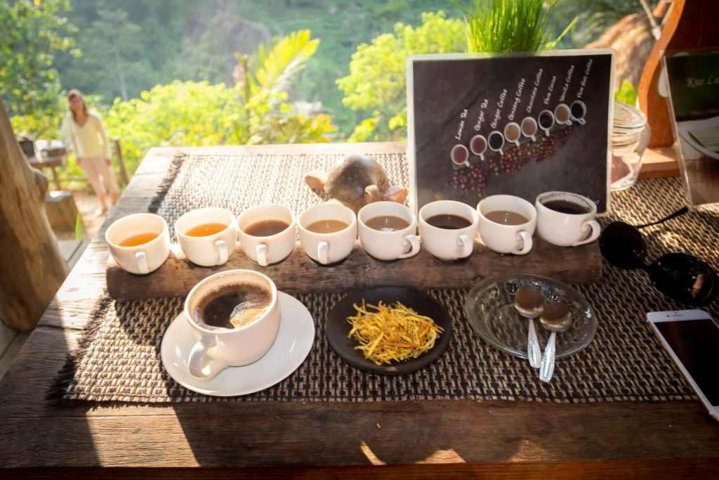 Civet coffee Bali
