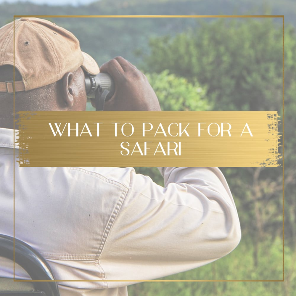 What to pack for a safari - expert tips and tricks and