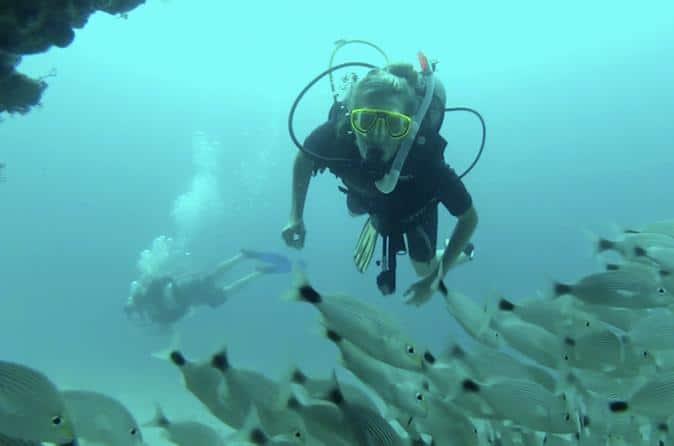 """""""Diving Marieta Islands"""""""