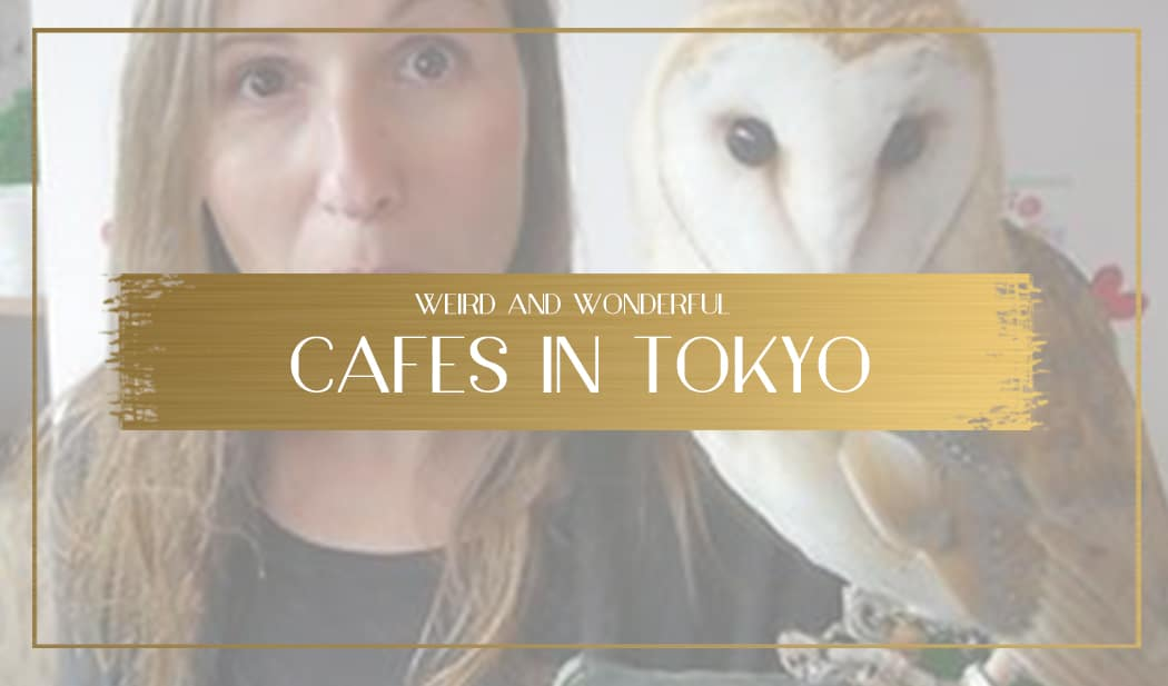 Cafes in Tokyo main