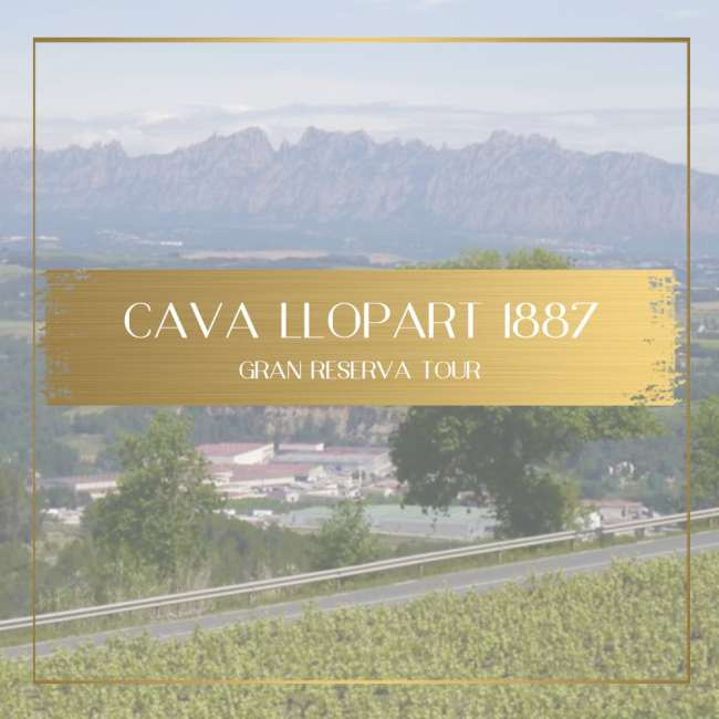 Cava Llopart feature