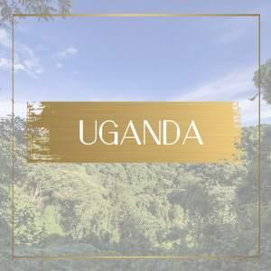 Destination Uganda