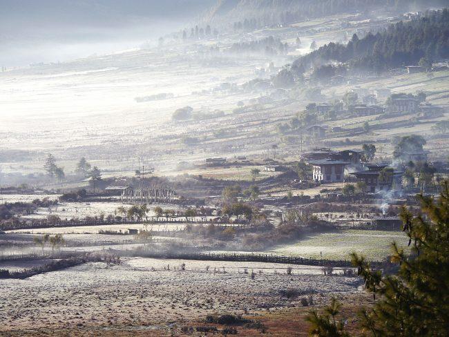 """""""Gangtey's valley"""""""