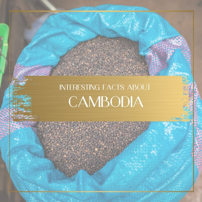 Facts about Cambodia Feature