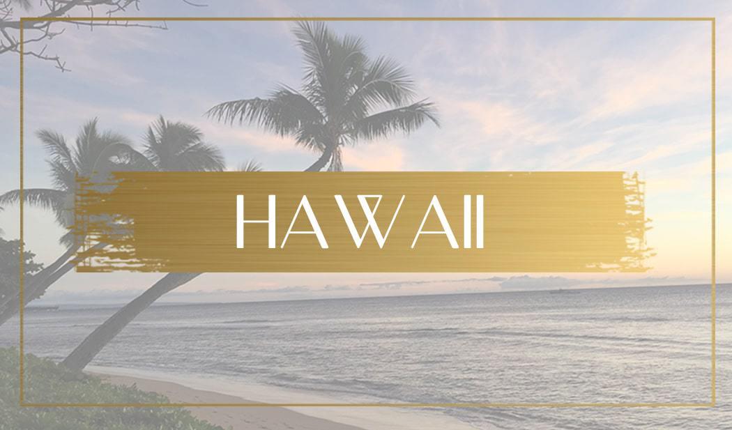 Destination Hawaii Main