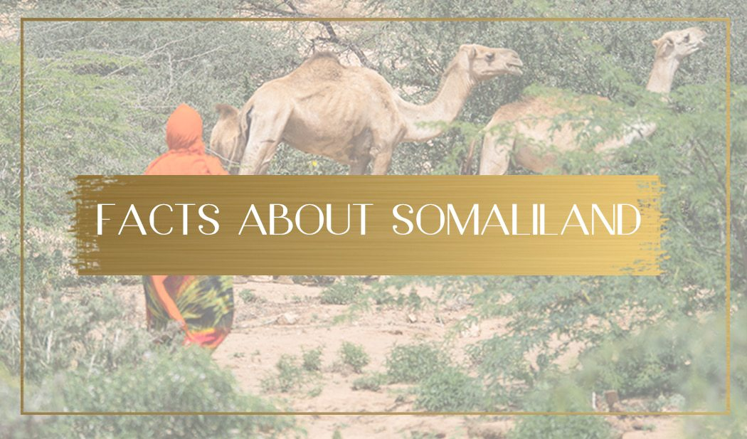 Facts About Somaliland main