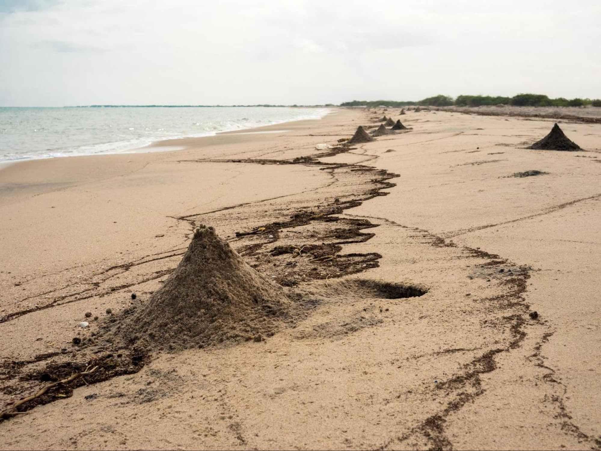 The beach in Berbera
