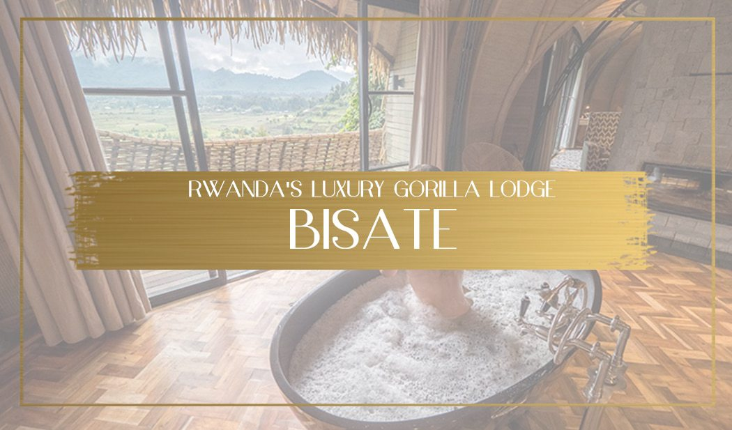 Bisate Lodge main