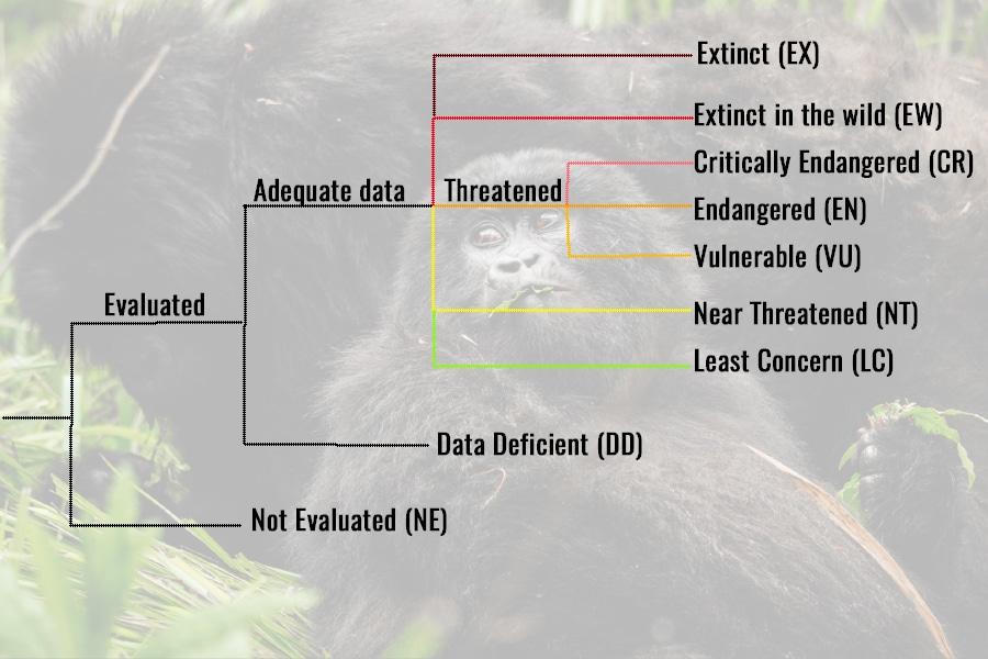 IUCN wildlife classifications