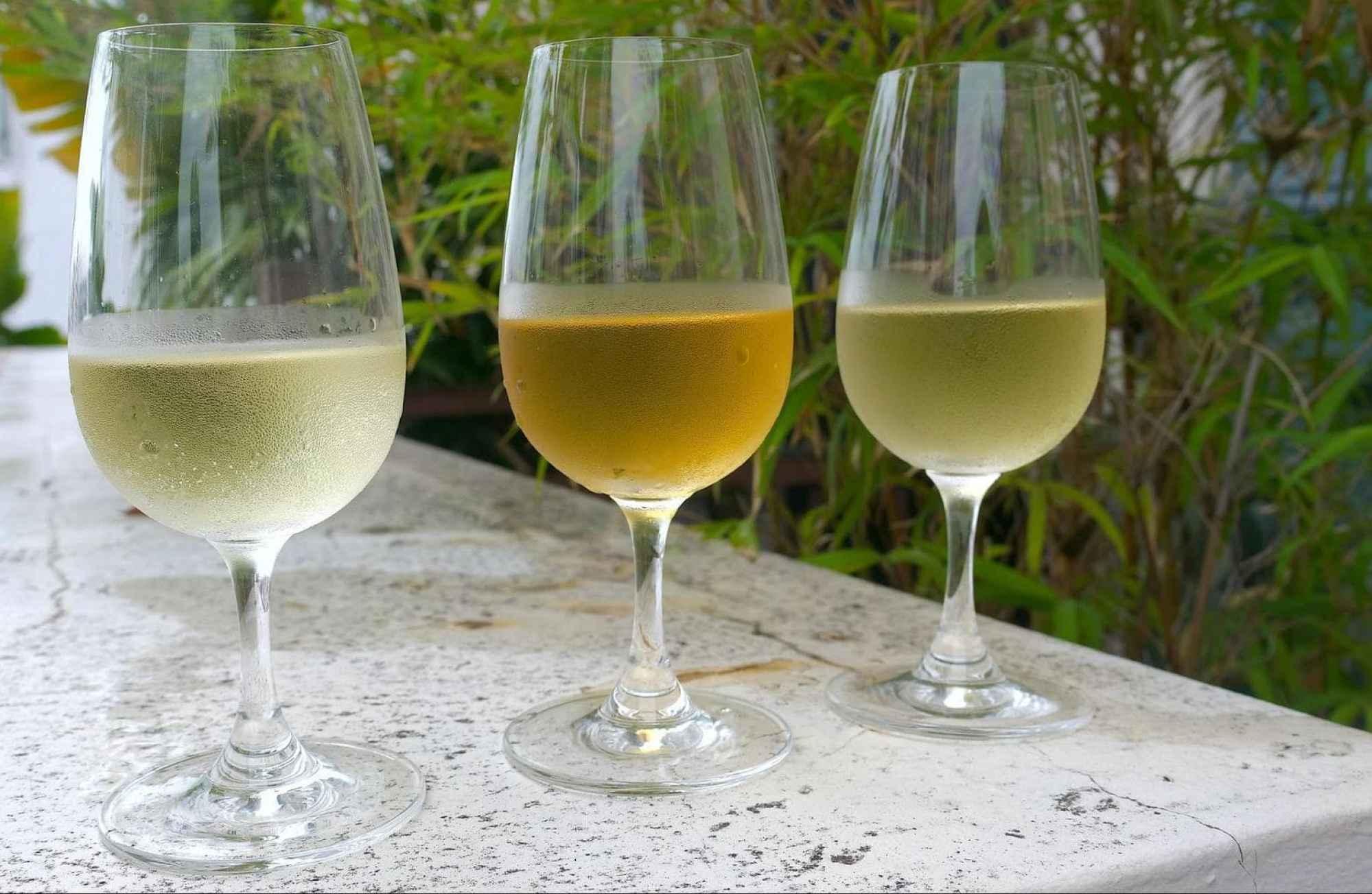 Three full bodied white wines