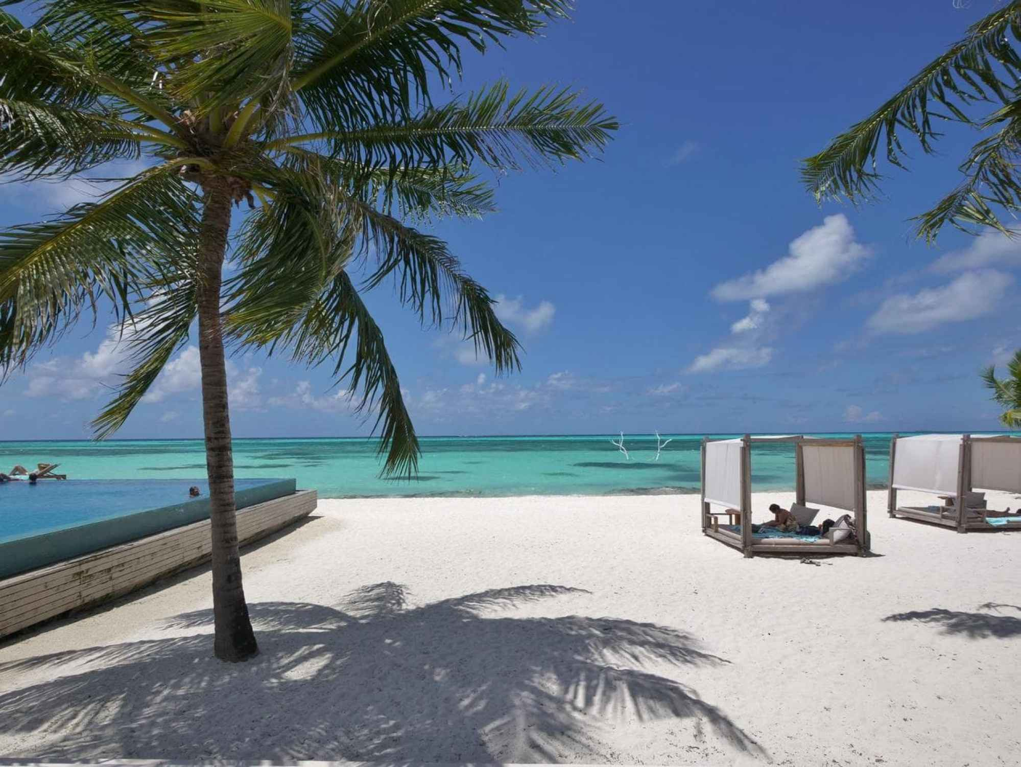 Infinity pool by Senses restaurant at LUX* Maldives