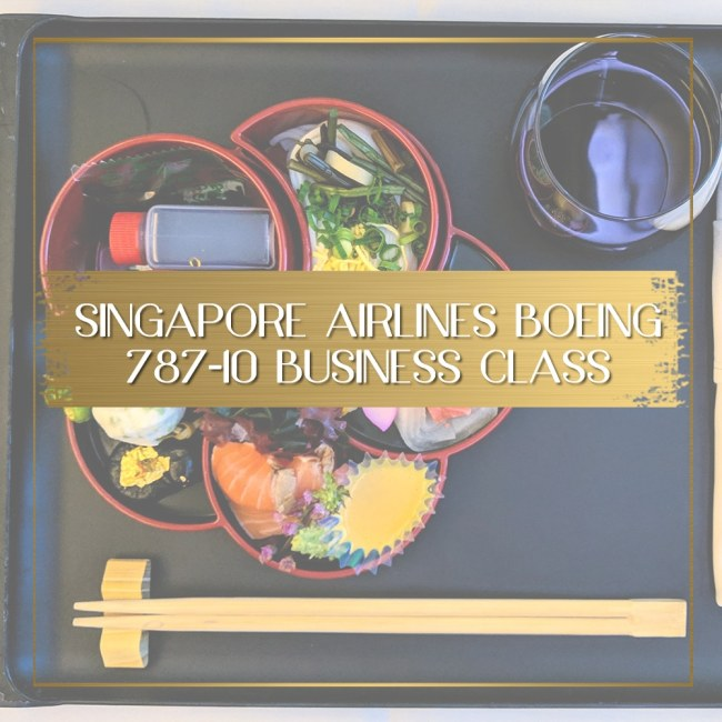 Singapore Airlines Boeing 787 10 Business Class feature