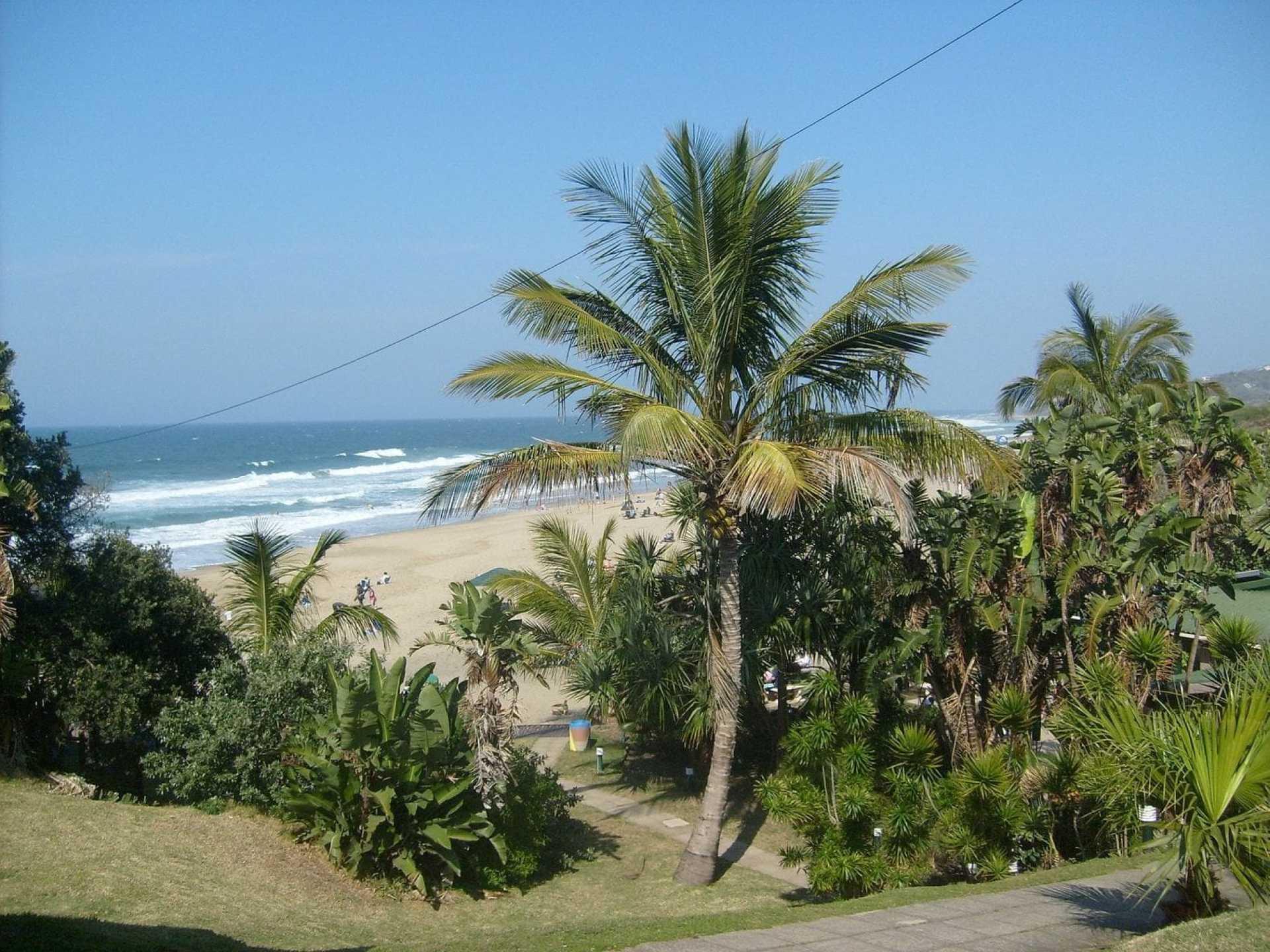 Marina Bay, lined with palm trees like Honolulu