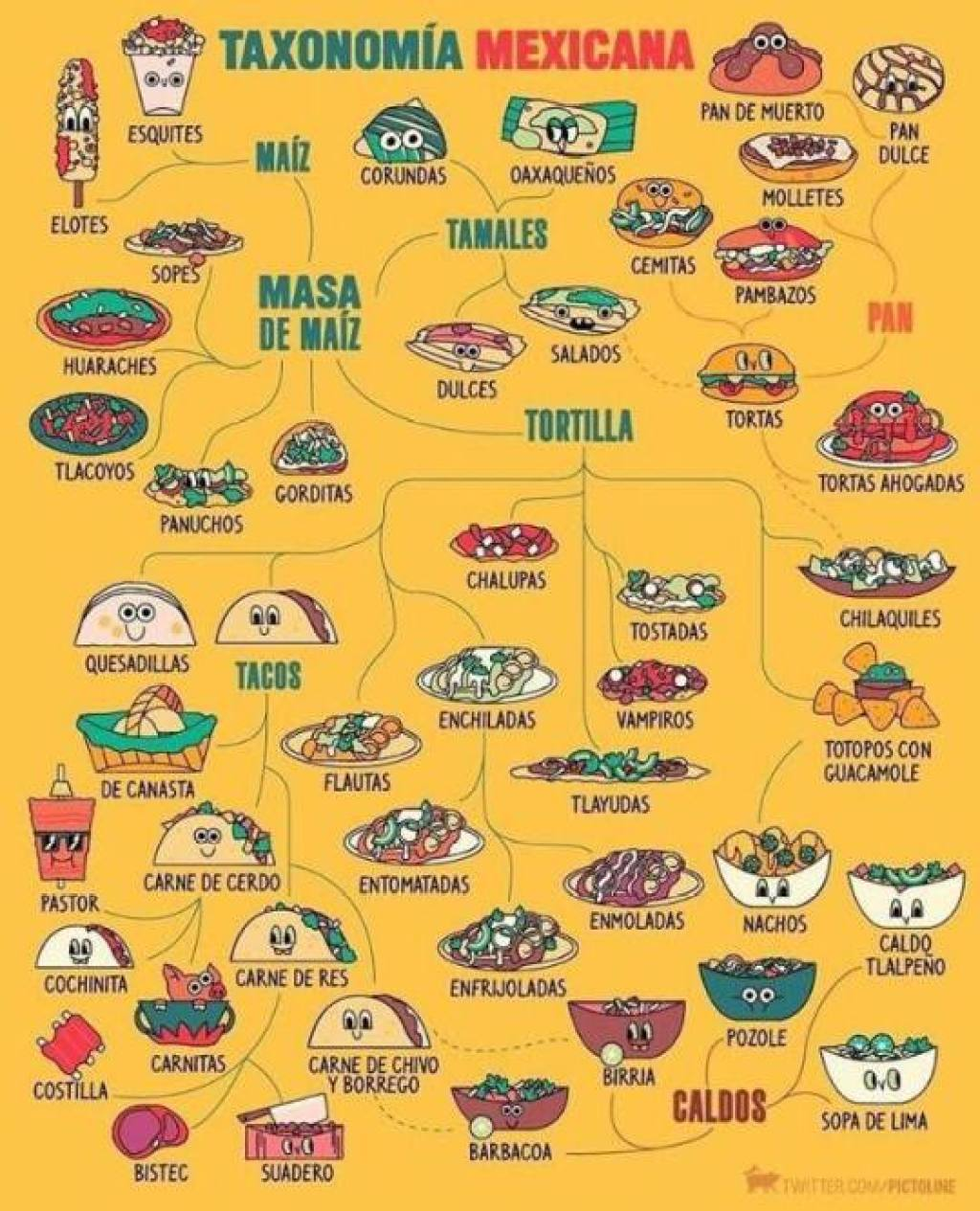 Taxonomy Mexicana