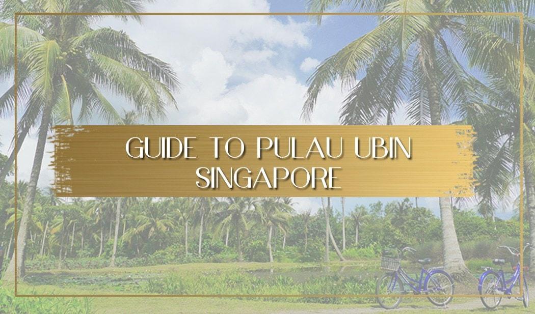 What to do in Pulau Ubin main
