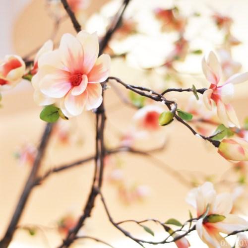 Chinese New Year Gardens