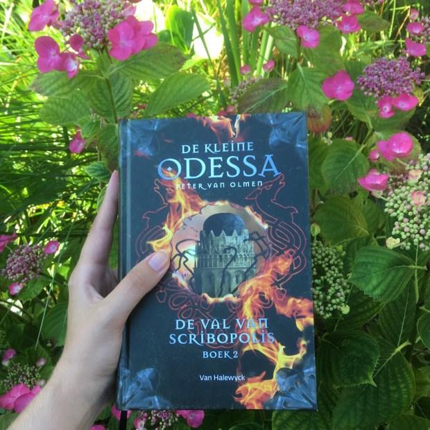 De Kleine Odessa - de Val van Scribopolis - boek 2
