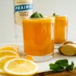 organic-vodka-cocktail