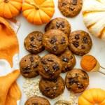 pumpkin dark chocolate chip oat cookies