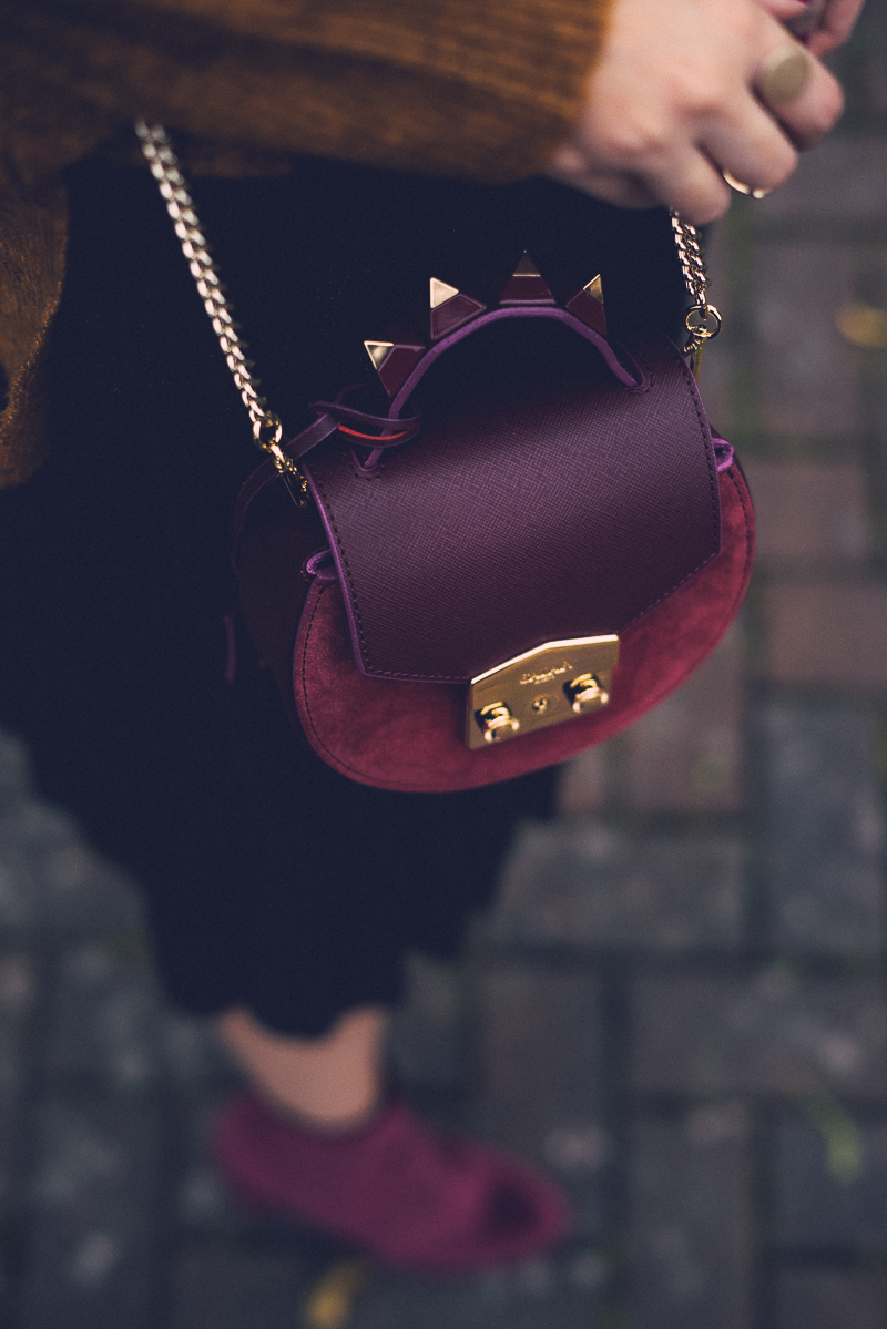 Salar Burgundy Bag