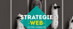 Strategie-Webmarketing-310x185